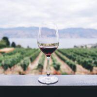 【せどりの利益本】ワイン関係のプレミア雑誌発見!